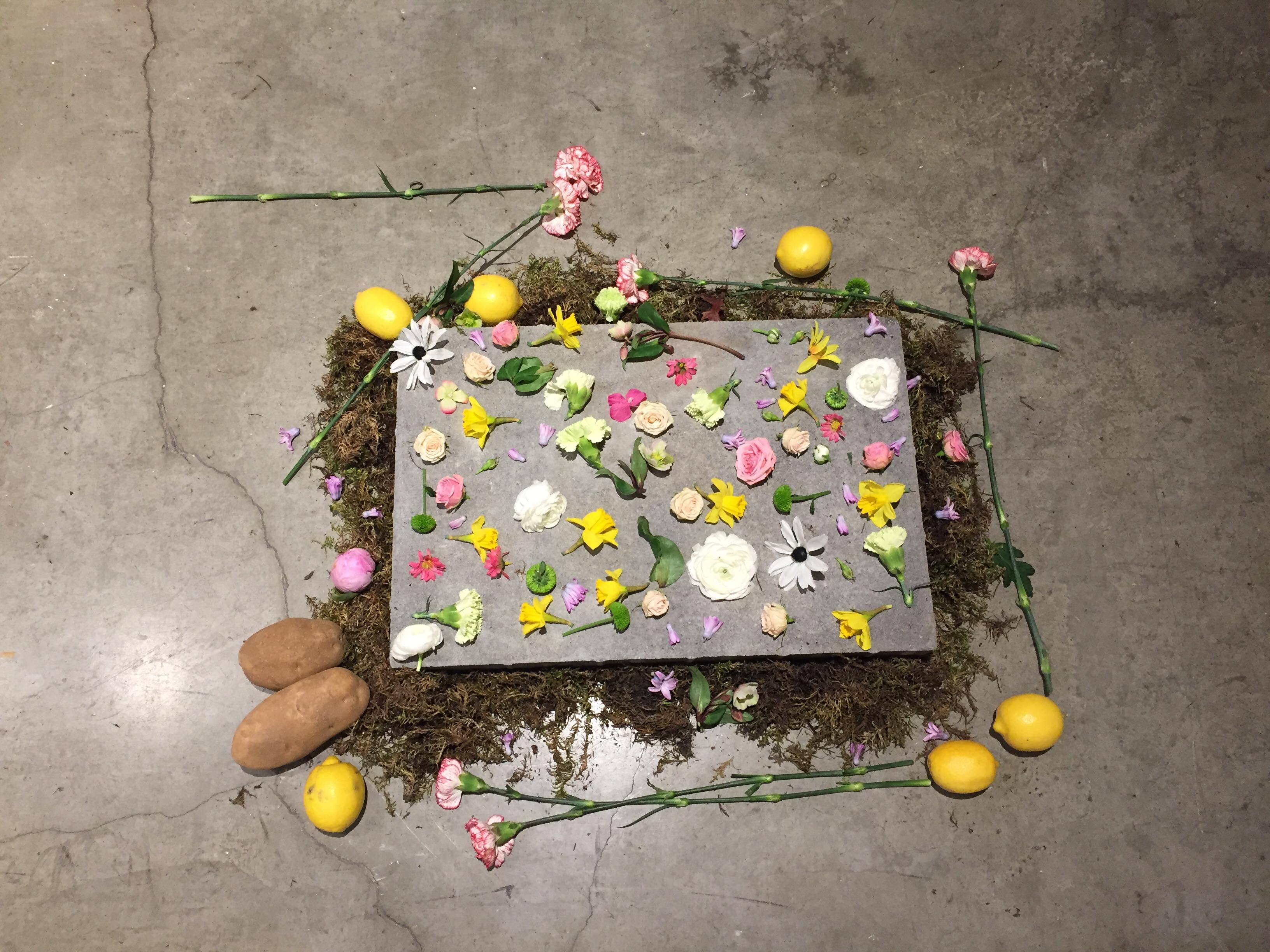 Photo: Mitra Kazemi, Ghost Spring installation, grunt gallery, 2018
